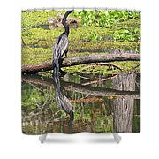 Anhinga And Reflection Shower Curtain