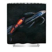 Animal - Fish - Beauty And Grace  Shower Curtain