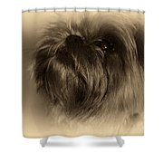 Anne Appeals Shower Curtain