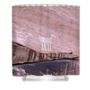Antelope House Petroglyphs Shower Curtain