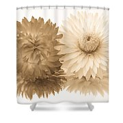 Antique Floral Duo Shower Curtain