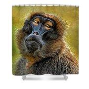 Ape Shower Curtain