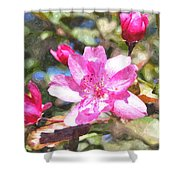 Apple Blossom Abwc Shower Curtain