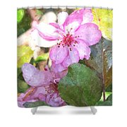 Apple Blossom II Ab2wc Shower Curtain