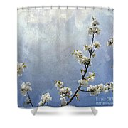 Apple Branch On A Textured Background Shower Curtain