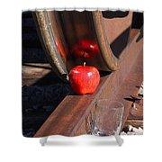 Apple Juice Railroad 4 Shower Curtain