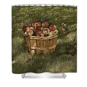 Apples In Basket Shower Curtain
