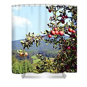 Apples On A Tree Shower Curtain
