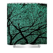 Aqua Scrub Shower Curtain