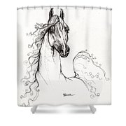 Arabian Horse Drawing 41 Shower Curtain