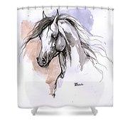 Arabian Horse Ink Drawing 1 Shower Curtain