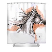 Arabian Horse Ink Drawing 3 Shower Curtain
