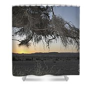 Aravah Desert Landscape  Shower Curtain