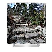 Arboretum Stairway Shower Curtain by Tim Allen