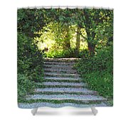 Arboretum Steps Shower Curtain