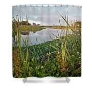 Arcata Marsh Shower Curtain