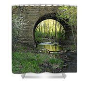 Arch In Spring 3 Shower Curtain