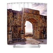 Arch Of Triumph Shower Curtain