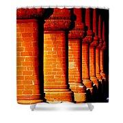 Archaic Columns Shower Curtain by Karen Wiles