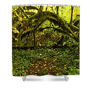 Arches In The Rainforest Shower Curtain