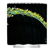 Arching Goldenrod Shower Curtain