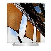 Architectural Detail 5 Shower Curtain