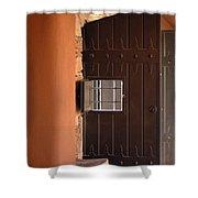Architectural Detail 6 Shower Curtain