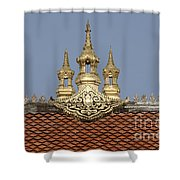 Architecture 1 Shower Curtain
