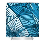 Architecture Design Shower Curtain