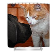 Are You Feeling Lucky Punk Shower Curtain