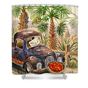 Arizona Sweets Shower Curtain