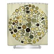 Arrangement Of Diatoms Shower Curtain