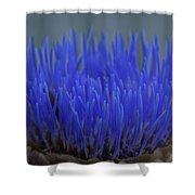 Artichoke Bloom Shower Curtain