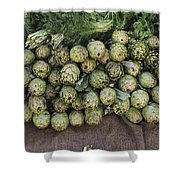 Artichokes And Greens Arranged Shower Curtain