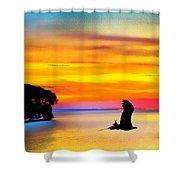 Artistic Conception Eagle Sundown Shower Curtain
