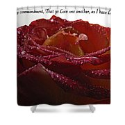 As I Have Loved You Shower Curtain