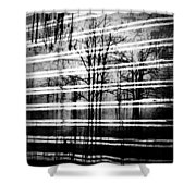 As The Swamp Sleeps Shower Curtain by Empty Wall