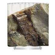 Asbestos Shower Curtain