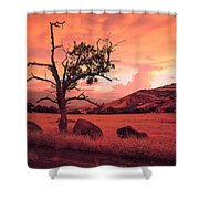 Ashland Sunset Shower Curtain