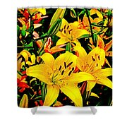 Asiatics In May  Shower Curtain
