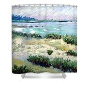 Asilomar Beach Shower Curtain