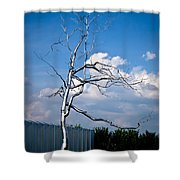 Askew - Roxy  Paine Shower Curtain