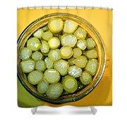 Asparagus In A Jar Shower Curtain
