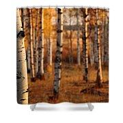 Aspen Amber Shower Curtain