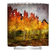 Aspen Grove In Autumn Shower Curtain