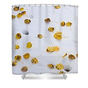 Aspen Leaves In The Snow Shower Curtain