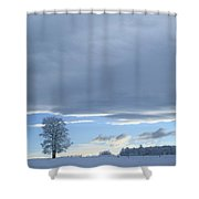 Aspen Tree And Winter Clouds Shower Curtain