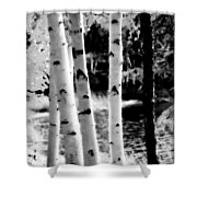 Aspens L Shower Curtain
