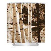 Aspens Llll Shower Curtain
