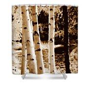Aspens S L Shower Curtain
